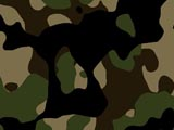 seamless camo sample